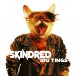 Big Tings Skindred