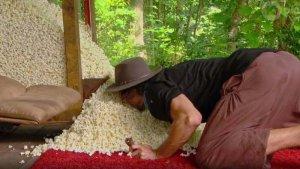 Australian Survivor S04E11 David popcorn