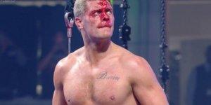 Cody Dynamite