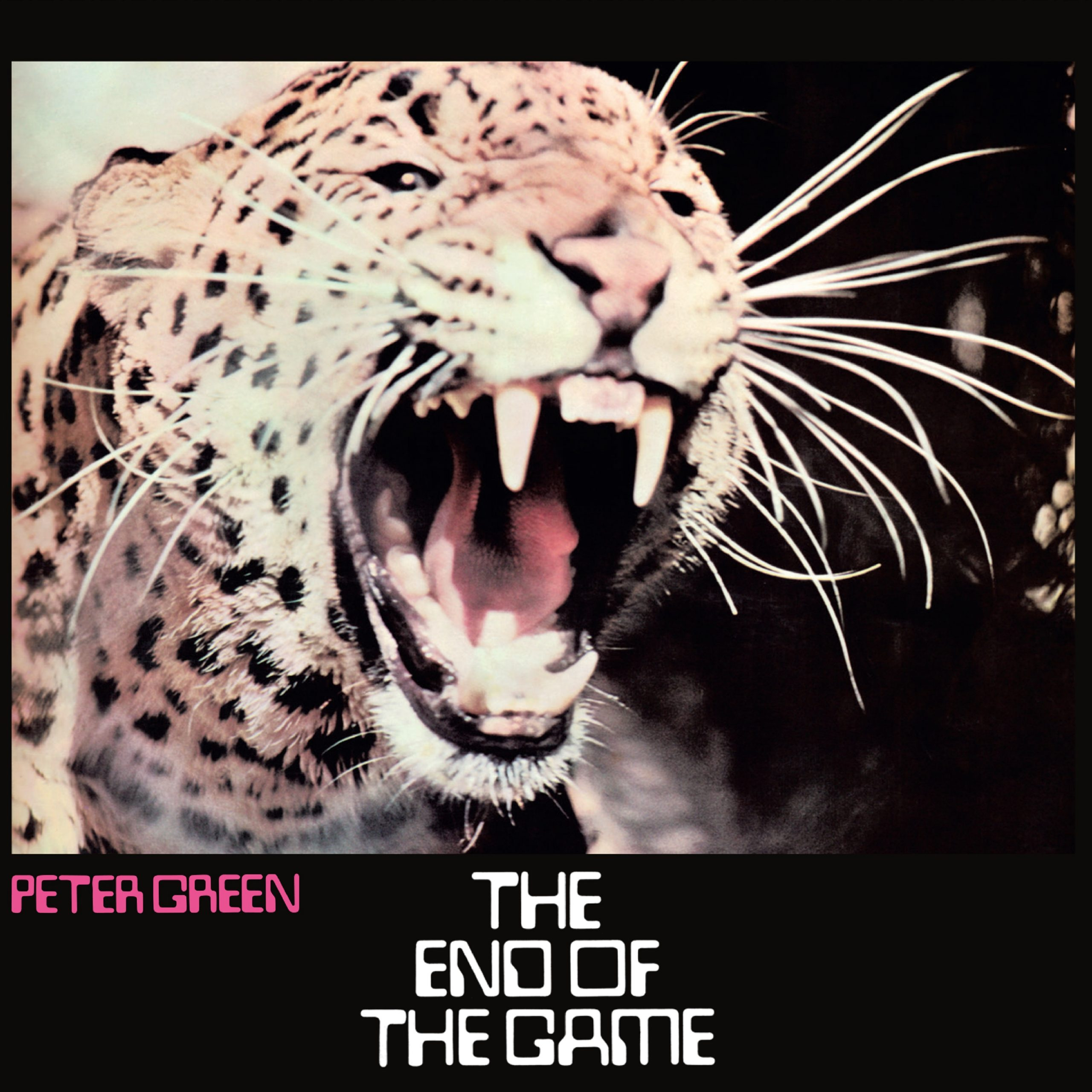 The End of the Game album cover